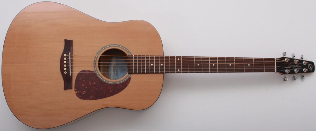 Beginner Acoustic Guitars
