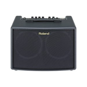 "Roland AC-60 - 30W 2x6.5"" Stereo AcousticAmp"